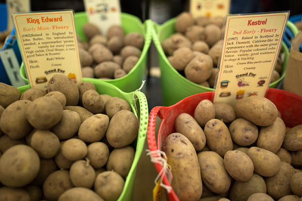 Potatoes are displayed during the RHS (Royal Horticultural Society's) Early Spring Fair on February 16, 2016 in London, England