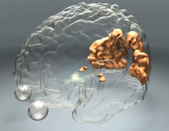 How Does the Brain Work? - Human Cognition | PSYCHOLOGY & BRAIN SCIENCE