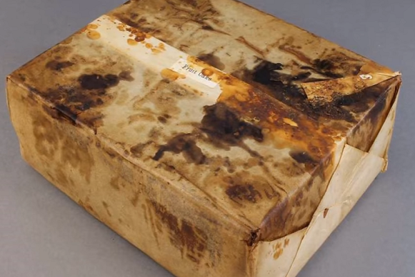 106 year old fruitcake found in Antarctica 'looked and smelled edible