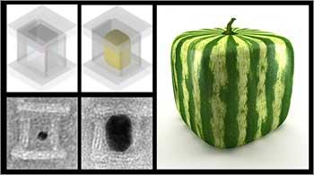 DNA nano-foundries cast custom-shaped metal nanoparticles