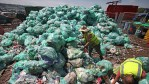 Biodegradable Plastic from CO2 and Sugar