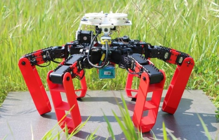 Antbot: the First Walking Robot that Moves Without GPS (IMAGE)