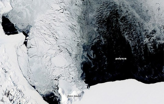 Polynya off the Antarctic Coast